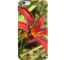 Blossom rouge iPhone Case/Skin