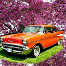 Cherry Picked '57 Chevy....A Classic by Larry Llewellyn