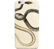 Joseph Fitzinger 1867 0121 Picture Atlas for popular scientific natural history of vertebrates iPhone Case/Skin