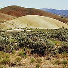 View No. 7 Painted Hills - John Day Fossil Beds National Monument, Grant County, OR by Rebel Kreklow