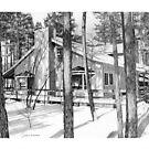 Mountain Cabin by J.D. Bowman