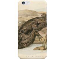 Joseph Fitzinger 1867 0219 Picture Atlas for popular scientific natural history of vertebrates iPhone Case/Skin