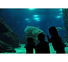 Lisbon Oceanarium Photographic Print