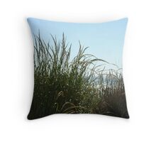 Narragansett Dunes- Beach Grass Throw Pillow