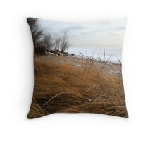 Beach grass in winter Throw Pillow
