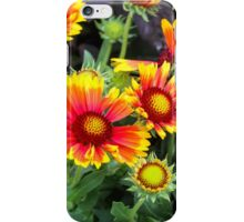 Exploding Petals iPhone Case/Skin