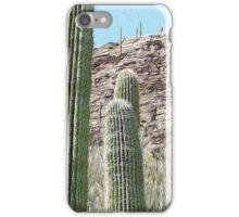 Saguaros 1 iPhone Case/Skin