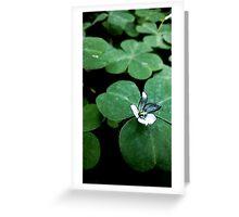 Flower Saga -  Clover Greeting Card