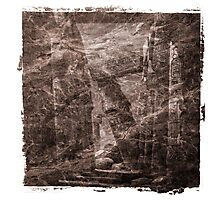 The Atlas of Dreams - Plate 16 Photographic Print