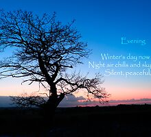 Winter Evening Haiku - a stark tree against a cold winter sky with a haiku by LSPictures