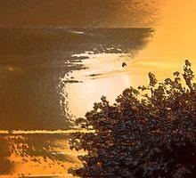 Golden Sky by 101artists
