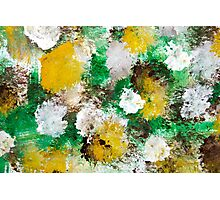 Forest Abstract Painting Photographic Print