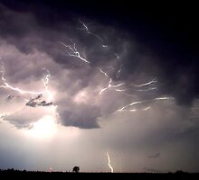 Scorpions Strike by photovorticity