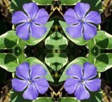 Vinca (Periwinkle) - In the Mirror Sticker