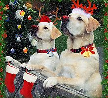 Waiting for Santa by Brenda Boisvert