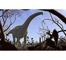 Futalognkosaurus dukei, a Cretaceous sauropod dinosaur Photographic Print