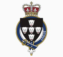 Coat of arms (family crest) for last-name or surname Stout (England) . Heraldry banner for your name. Kids Clothes