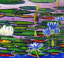 waterlillie pond by John Segond