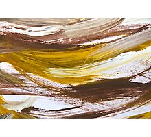 Harmony Abstract Painting Photographic Print
