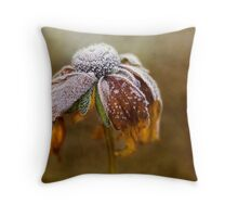 Sugar frosted Throw Pillow