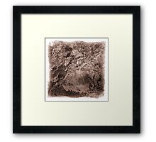 The Atlas of Dreams - Plate 17 Framed Print
