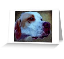 Every dog has it's day and the difficulty with noses! Greeting Card