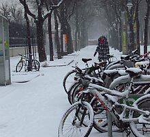 Vienna - Bikes in the snow by Maureen Keogh
