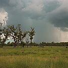 Cloudburst by David Haworth
