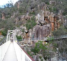 Walking the gorge, Trevallyn Gorge, Launceston, Tasmania by RainbowWomanTas