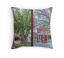 Two Seasons Throw Pillow