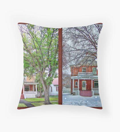 Two Seasons Throw Pillow