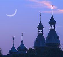 """Crescent Moons"" - University of Tampa Minarets by John Hartung"