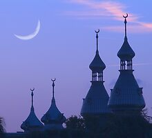 """Crescent Moons"" - University of Tampa Minarets by ArtThatSmiles"