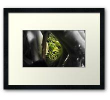 Broccoli Jungle Framed Print