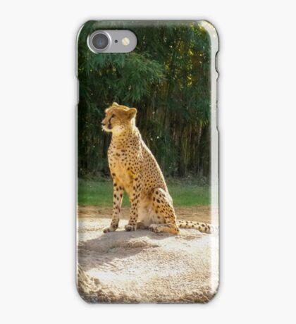 Cheeta iPhone Case/Skin