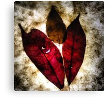 red leaves Canvas Print