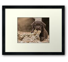 Dope With a Rope Framed Print