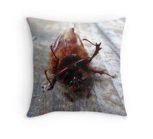 Beetle - Grants Pass, Oregon Throw Pillow