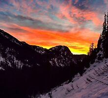 Orange Snowrise by Cole Miller