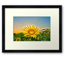 """Flowering Sun"" - sun setting behind sunflower Framed Print"