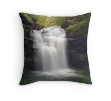 Big Falls Throw Pillow