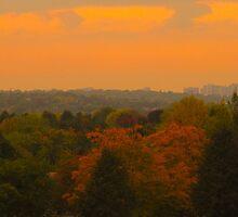 Peach Autumn Sunset by MarianBendeth