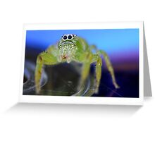 Groover Greeting Card