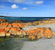 British Admiral Beach - King Island by Greg Earl