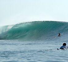 indo waves by stiddy