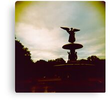 fountaine Canvas Print