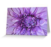 Purple Flower... Greeting Card