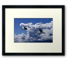 Wind Riders Framed Print