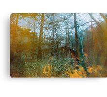 Forest Entomology Canvas Print