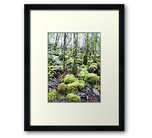 How Green are the Hills Framed Print
